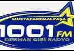 1001 FM Radio