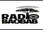 Radio-Baobab