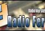 Radio-DM-Feral