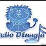 Radio-Dzungla