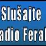 Radio-Feral