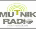 Radio-Mutnik