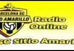 radio bsc sitio amarillo