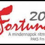 fortuna radio paks