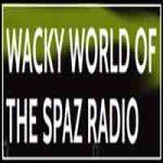 Wacky World of The Spaz