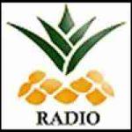 Ananaz Radio