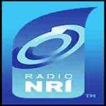 NRI Telugu