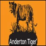 Anderton Tiger Radio