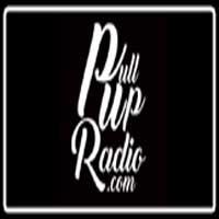 PullUpRadio
