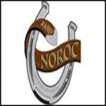 Radio Noroc