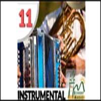 Schwany Radio 11 - Instrumental