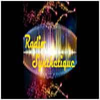 Radio Synthetique