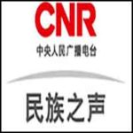 CNR National Voice