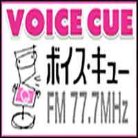 VOICE CUE