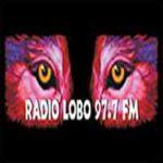 97.7 Radio Lobo