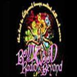 Bollywood Radio & Beyond