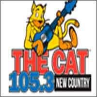 105.3 The Cat