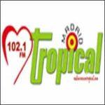 Corazon Tropical