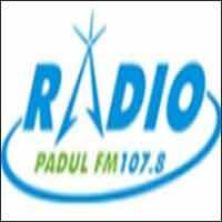 Radio Padul Fm